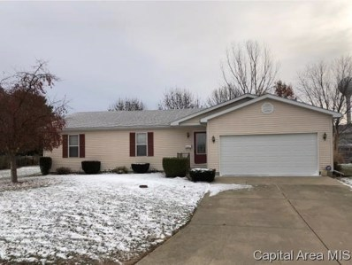 18910 Perry Drive, Virden, IL 62690 - #: 187452