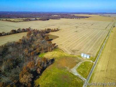 E County Rd 625, Ramsey, IL 62080 - #: 187674