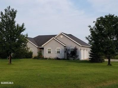 28-2 Colonial Court, Lake Carroll, IL 61046 - #: 20190153