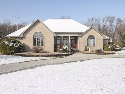 3215 N 2300 East Road, St. Anne, IL 60964 - #: 09397417