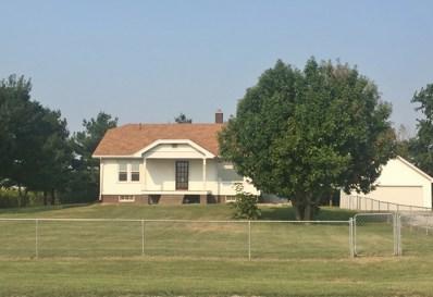 375 N State Route 130, Arcola, IL 61910 - #: 09740328