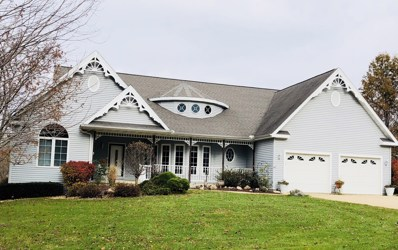 125 Via Savoy, Mark, IL 61340 - #: 09806889