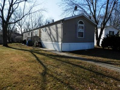 18 Birch Street, Minooka, IL 60447 - #: 09842730