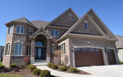 20 Pinnacle Court, Naperville, IL 60565 - #: 09857839
