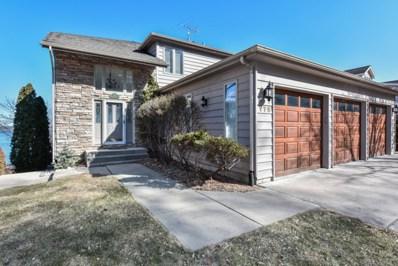 175 Waltonian Terrace, Fox Lake, IL 60020 - #: 09894074