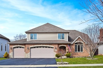 160 Lincoln Street, Roselle, IL 60172 - #: 09901768