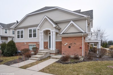 1138 Jordan Circle, Lake Zurich, IL 60047 - #: 09901943
