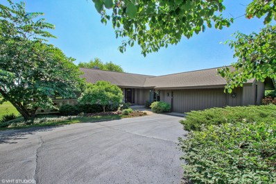3317 Bluejay Lane, Woodstock, IL 60098 - #: 09906250