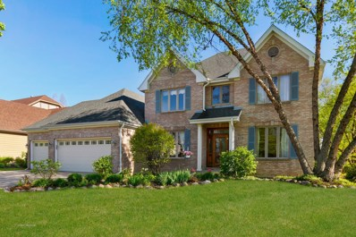 1229 Richfield Court, Woodridge, IL 60517 - #: 09922826
