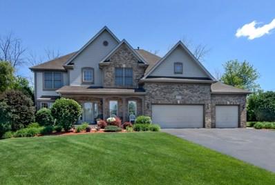 1025 Riverstone Drive, Aurora, IL 60502 - #: 09971702