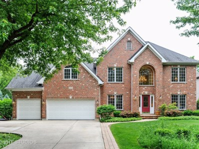 6334 Tennessee Avenue, Willowbrook, IL 60527 - #: 09983636