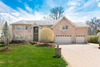11 W Kenilworth Avenue, Prospect Heights, IL 60070 - #: 09985283