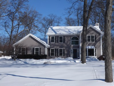 5704 Whiting Drive, Mchenry, IL 60050 - #: 10000741