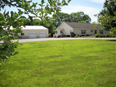 1153 County Highway 6, Shelbyville, IL 62565 - #: 10003679