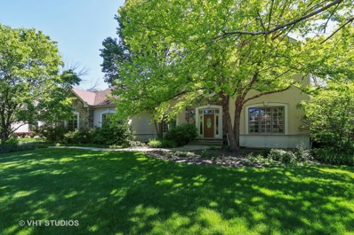 455 Somerset Hills Court, Riverwoods, IL 60015 - #: 10006769