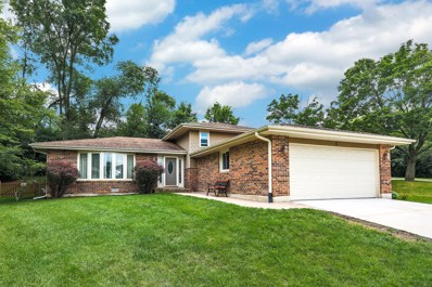 6 N Charles Street, Naperville, IL 60540 - #: 10011476