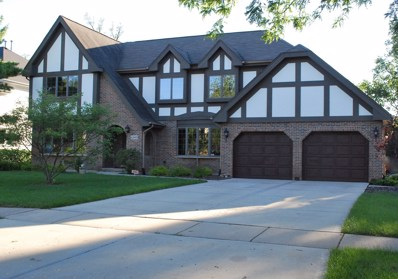 6240 Squire Lane, Willowbrook, IL 60527 - #: 10013953