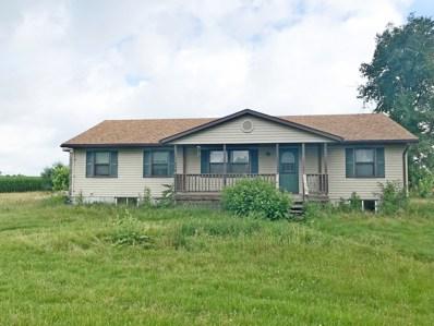 207 E 4th Street, Mineral, IL 61344 - #: 10025499