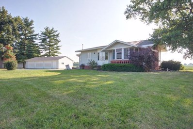 2575 Us Hwy 36 Highway, Newman, IL 61942 - #: 10028458