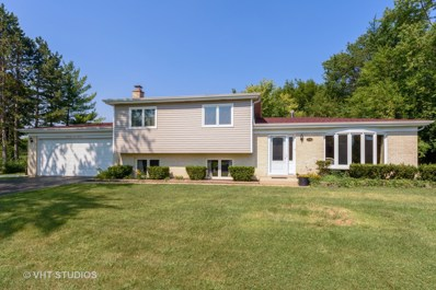 206 Lancaster Avenue, Prospect Heights, IL 60070 - #: 10031988