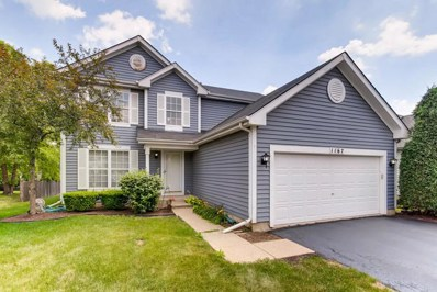 1167 Lakewood Circle, Naperville, IL 60540 - #: 10032261
