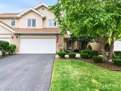 9412 Windsor Parkway, Tinley Park, IL 60487 - #: 10037517