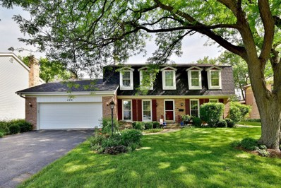 206 White Fawn Trail, Downers Grove, IL 60516 - #: 10053989