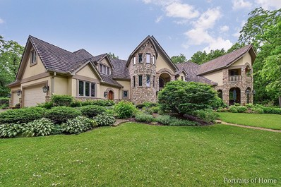 3N743 High Point Lane, Campton Hills, IL 60175 - #: 10059503