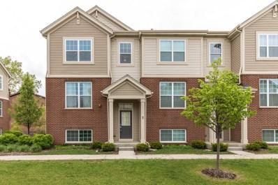 100 S Dee Road, Park Ridge, IL 60068 - #: 10064267