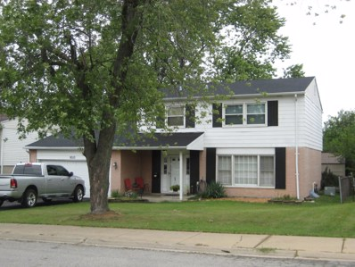 9010 Meadowview Drive, Hickory Hills, IL 60457 - #: 10065516