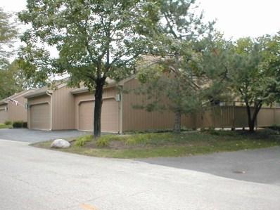 920 Oak Hill Road UNIT 513, Lake Barrington, IL 60010 - #: 10075831