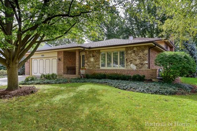20W515 Peters Drive, Downers Grove, IL 60516 - #: 10105745