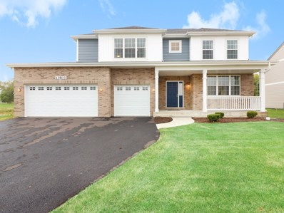 13513 Carmel Boulevard, Plainfield, IL 60544 - #: 10110945