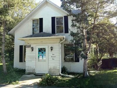 101 E Lincoln Street, Mount Morris, IL 61054 - #: 10113571
