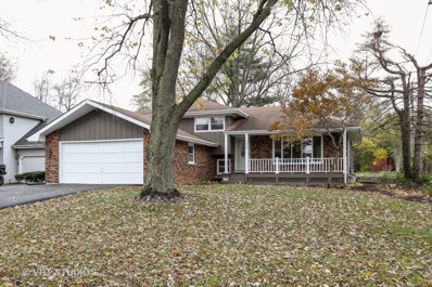 329 N Lincoln Street, Westmont, IL 60559 - #: 10131155