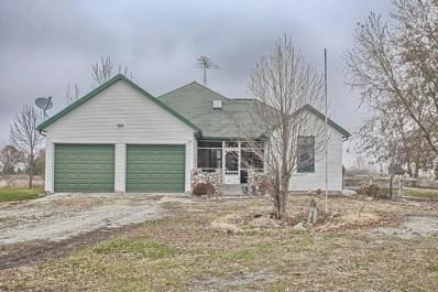 1135 N County Road 2050 EAST, Newman, IL 61942 - #: 10139688