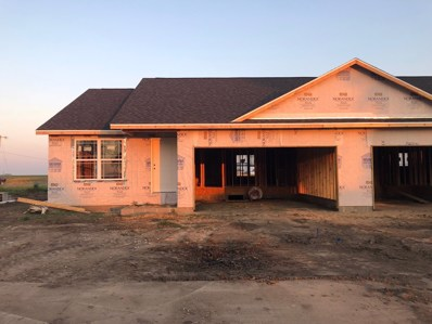 115 Sunset Court UNIT 0, Fisher, IL 61843 - #: 10279495