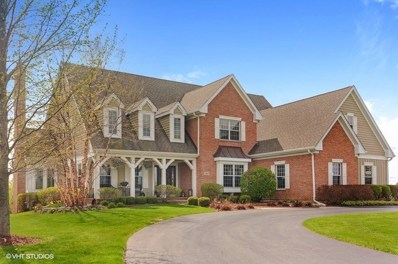 104 Governors Way, Hawthorn Woods, IL 60047 - #: 10280119