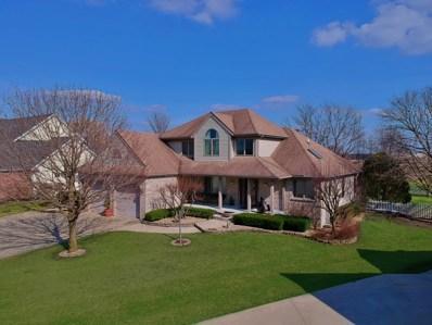 312 Rock Creek Drive, Manteno, IL 60950 - #: 10334298