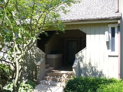 944A Oak Hill Road UNIT 517SFL, Lake Barrington, IL 60010 - #: 10369023