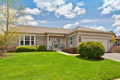 13186 Silver Birch Drive, Huntley, IL 60142 - #: 10377747