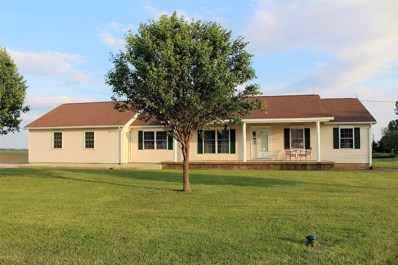 3032 State Highway 10, Clinton, IL 61727 - #: 10405448