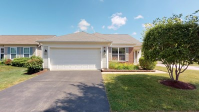 13117 Silver Birch Drive, Huntley, IL 60142 - #: 10449621