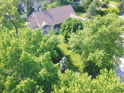 1228 W 54th Place, La Grange Highlands, IL 60525 - #: 10450466