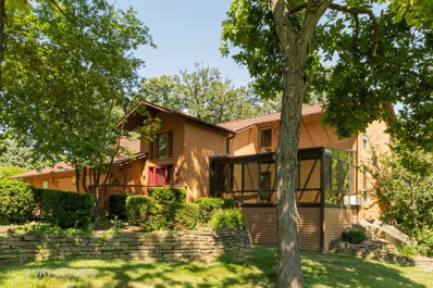 19641 Woodside Drive, New Lenox, IL 60451 - #: 10455419