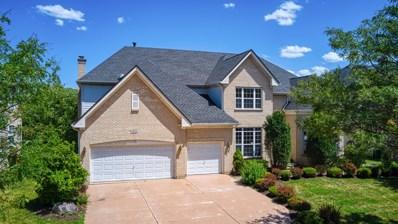 421 Elderberry Lane, Streamwood, IL 60107 - #: 10464847