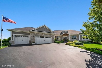 10202 Clearwater Way, Huntley, IL 60142 - #: 10471500