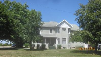 315 N Main Street, Clifton, IL 60927 - #: 10481480