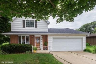 120 Oak Street, Seneca, IL 61360 - #: 10482110
