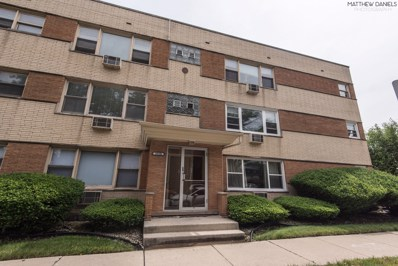 10100 S Pulaski Road UNIT 2E, Oak Lawn, IL 60453 - #: 10482445